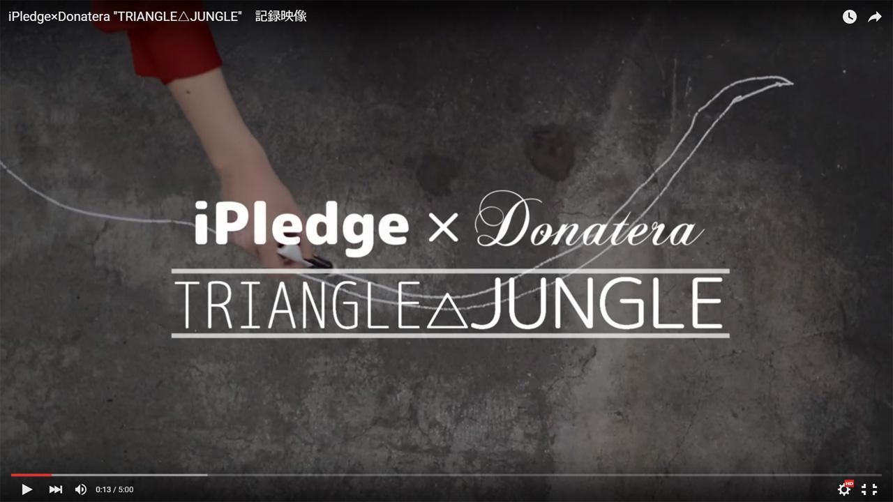 iPledge_Donatera